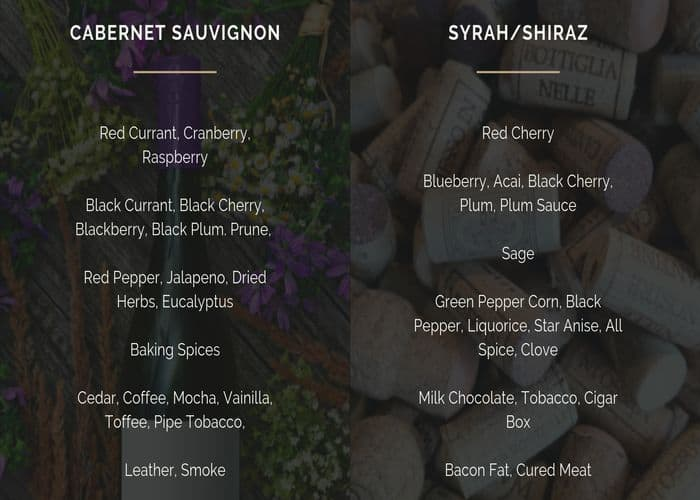 shiraz-vs-cabernet